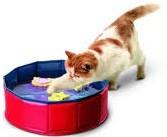 Katten speelbad Splash