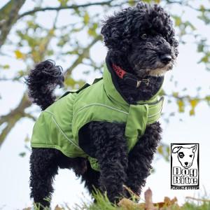 Afbeelding Dogbite - Regenjas Groen door DierenwinkelXL.nl