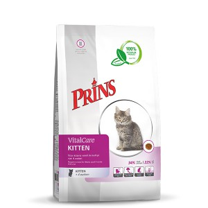 Prins - VitalCare - Kitten