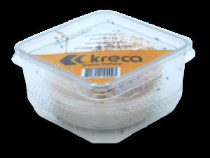 Kreca - Fruitvlieg klein met maden