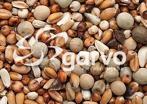 Garvo - Kortbekkenvoer (5590)