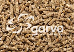 Garvo - Kuiken Opfokkorels 2mm (5012)