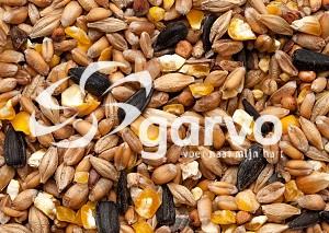 Garvo - Gebroken Graan met Grit en Zonnepitten (4140)