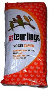 Teurlings Kanarie 215 Postuur