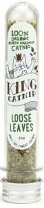 King Catnip - Kattenkruid