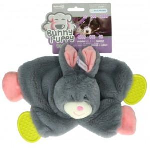 Bunny Puppy - Crunchy Chew