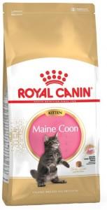 Royal Canin - Mainecoon Kitten