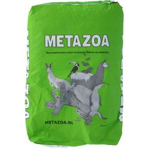Metazoa - Knaagdierkorrel