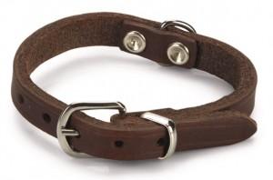 Beeztees - Halsband Bruin Geniet